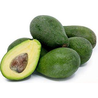 Organik Avokado  -Adet